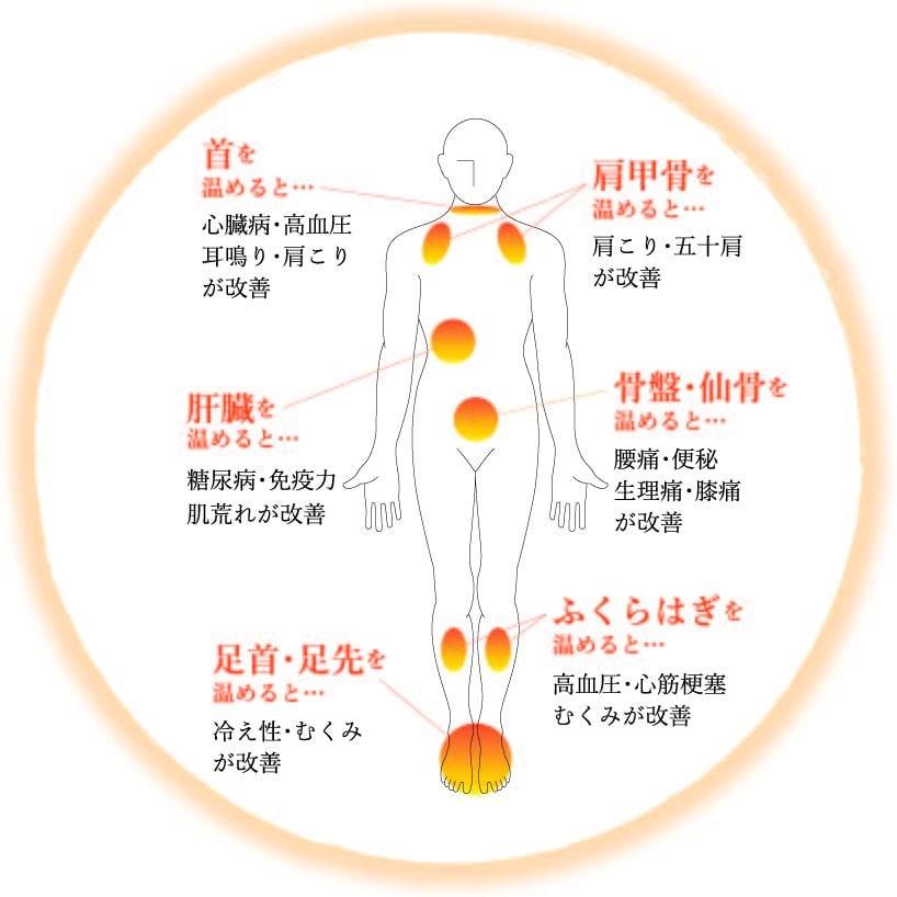 〜温熱のスペシャリスト育成〜『体温管理指導士資格』通信講座のイメージその5