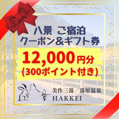 八景 ご宿泊クーポン&ギフト券