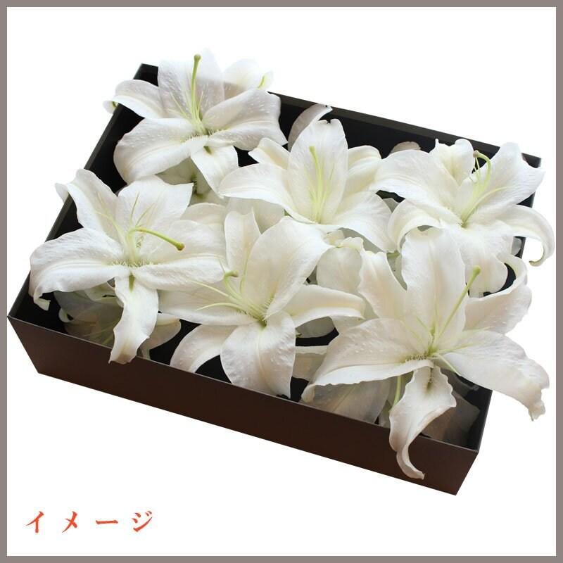 【社会貢献チケット】 〜あなたの100円がおひとり様のお花に変わります〜のイメージその2