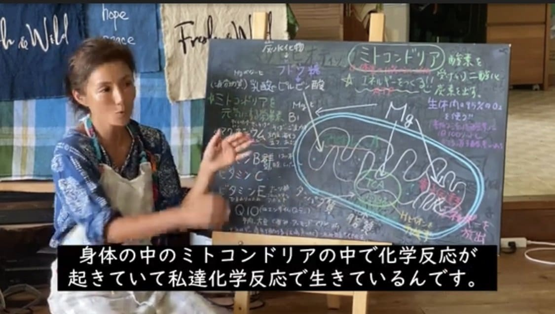 〜ミトコンドリアについて〜&代々受け継がれる 昔ながらの梅干しの作り方〜 吉本多香美のマクロビ分子栄養オンライン動画講座のイメージその2