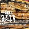 【店内飲食専用】日本のうなぎの最高峰!あの福岡柳川の江口商店のうなぎ5600円が半額2800円で食べられる券!限定20食のみ!