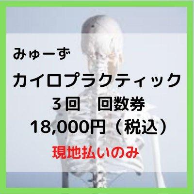 カイロプラクティック 回数券 3回【現地払のみ】