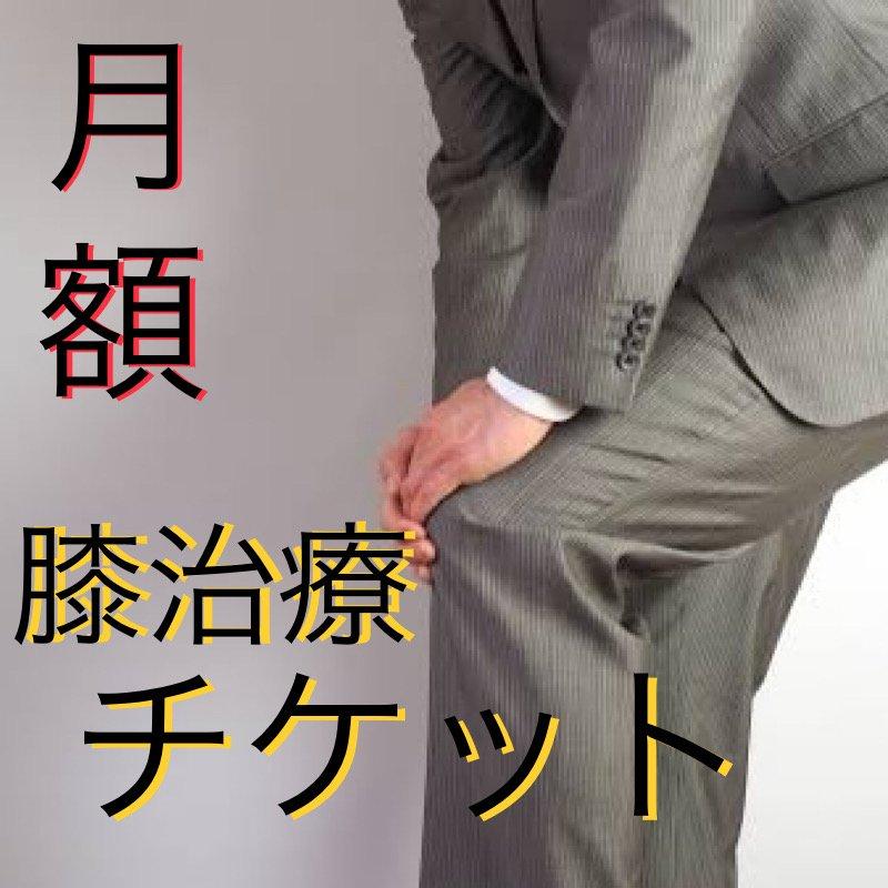 【膝】月額治療チケットのイメージその1
