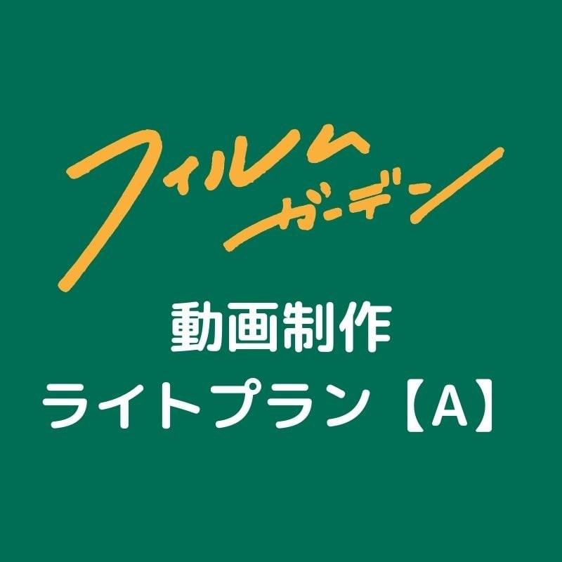 動画制作ライトプラン【A】のイメージその1