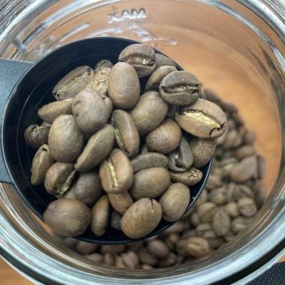 自家焙煎珈琲 コーヒー豆 100G タンザニア