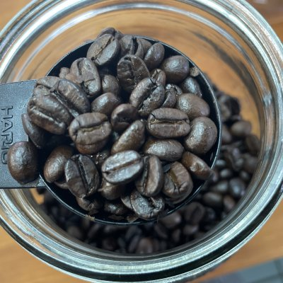 自家焙煎珈琲 コーヒー豆 100G ブラジル