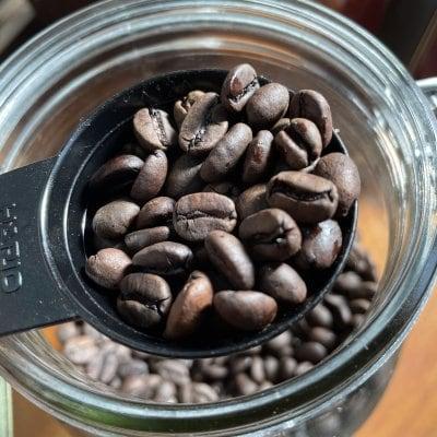 自家焙煎珈琲 コーヒー豆 100G ペルー
