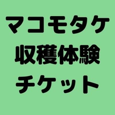 千葉県鋸南町でマコモタケ収穫体験チケット