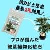 防カビ剤入り化粧石『カビキックスストーン』800g