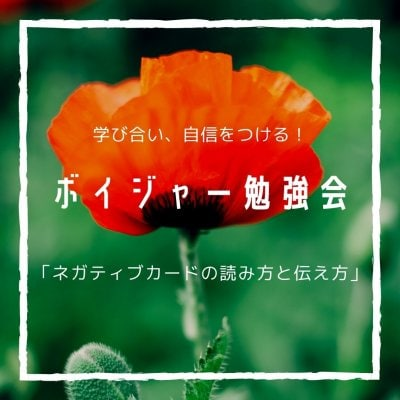 Zoomボイジャー勉強会 3月19日(金曜日) 13:00−15:00 *レベル1受講者対象