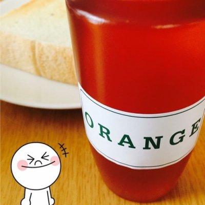 【情熱の赤】オレンジの蜂蜜 250g【スペイン産】