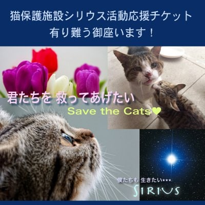 猫保護活動応援チケット