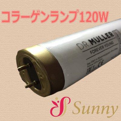 コラーゲンマシン用ランプ120W