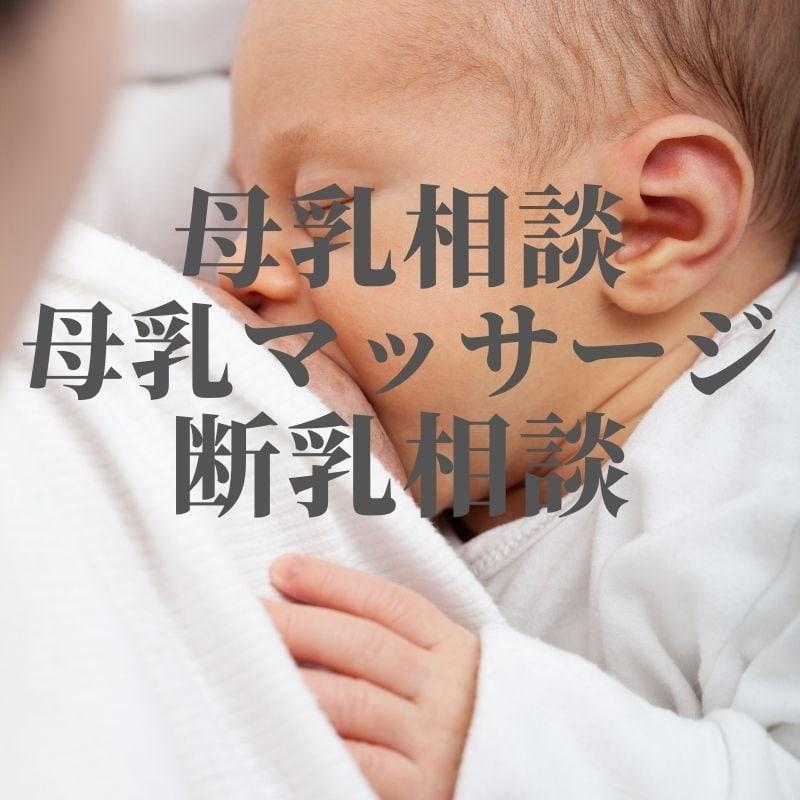 訪問母乳相談・母乳マッサージ・断乳相談(約30〜60分)のイメージその1