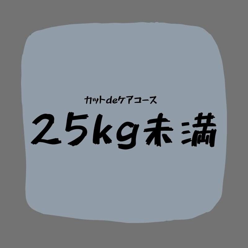カットdeケアコース(25kg未満)のイメージその1