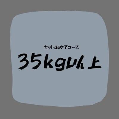 カットdeケアコース(35kg以上)