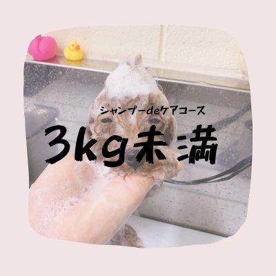 シャンプーdeケアコース(3キロ未満)