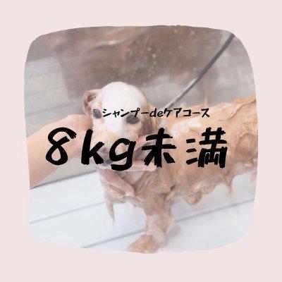 シャンプーdeケアコース(8キロ未満)