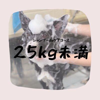 シャンプーdeケアコース(25キロ未満)