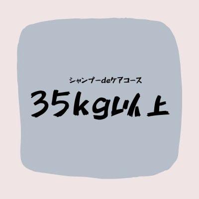 シャンプーdeケアコース(35キロ以上)