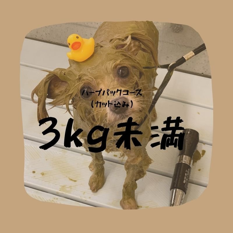 ハーブパックコース(3キロ未満)カット込みのイメージその1