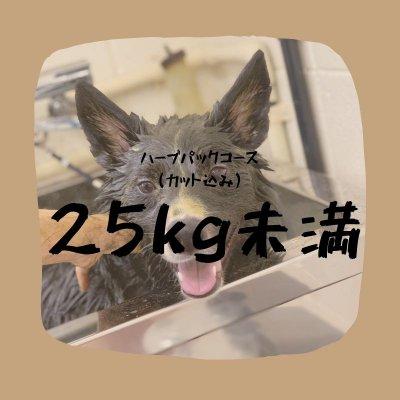 ハーブパックコース(25キロ未満)カット込み