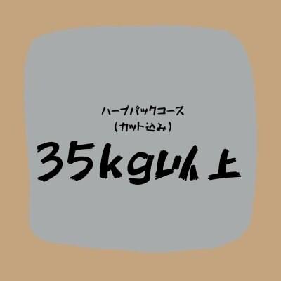 ハーブパックコース(35キロ以上)カット込み