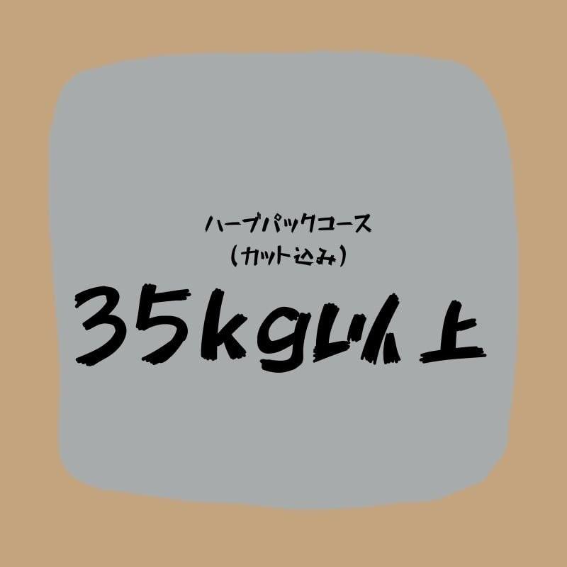ハーブパックコース(35キロ以上)カット込みのイメージその1