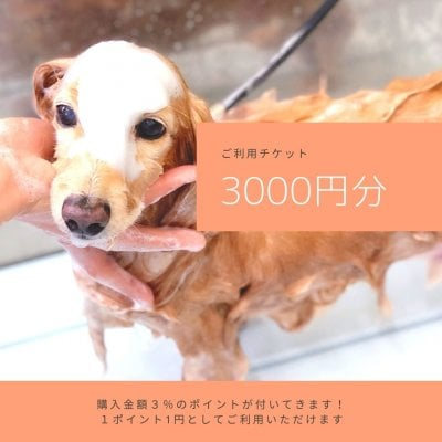 ご利用チケット3000円分
