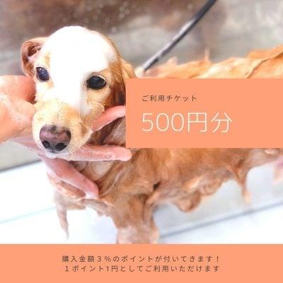 ご利用チケット500円分