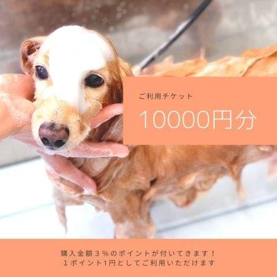 ご利用チケット10000円分