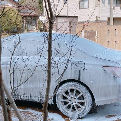 シャンプー洗車チケット
