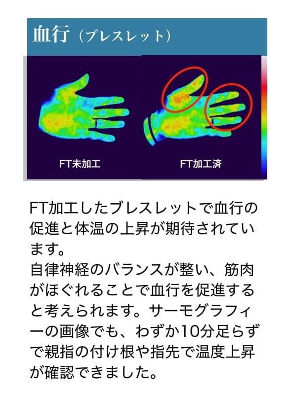 FT Plus 44 アラジン3点セットのイメージその5