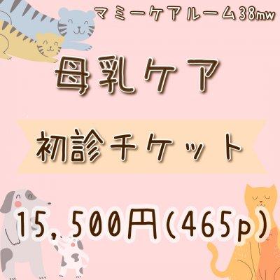◆現地払い専用◆母乳ケア初診チケット(骨盤ケア&赤ちゃんケアが含まれます)