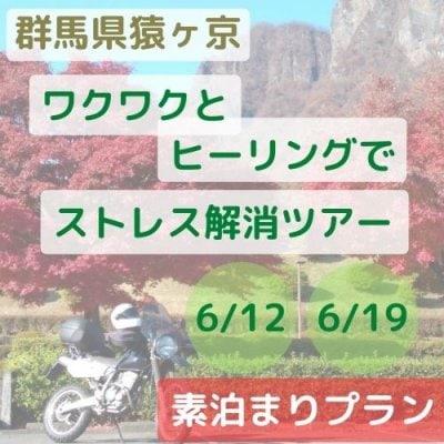 【素泊まりプラン】群馬県猿ヶ京ワクワクとヒーリングでストレス解消ツアー