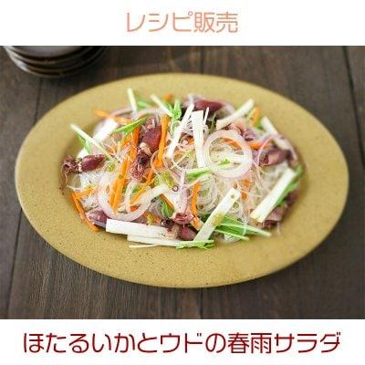 ほたるいかとウドの春雨サラダ(レシピ)