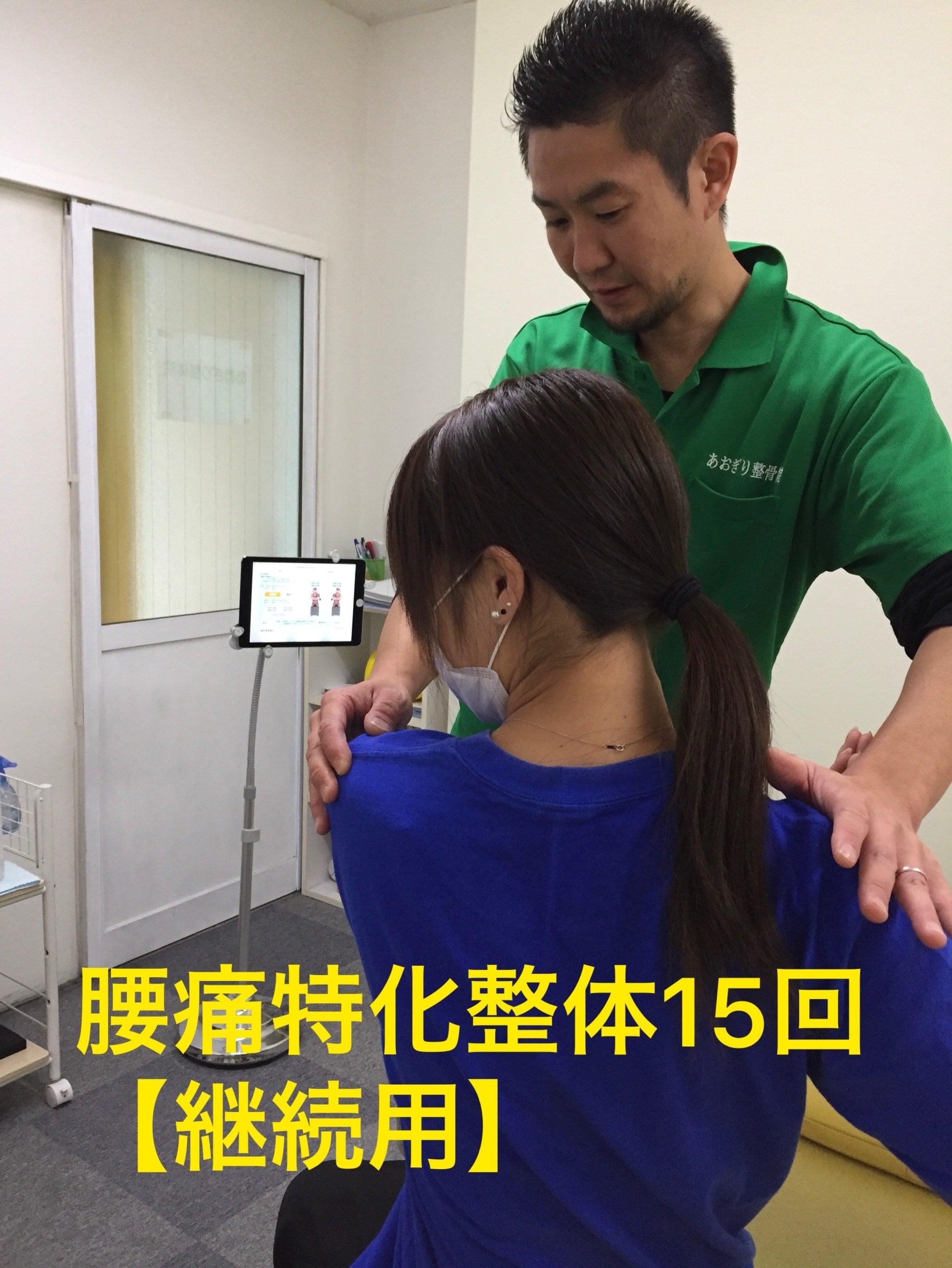 腰痛特化整体 15回【継続用】のイメージその1