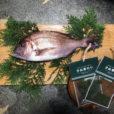 【週1回限定】オーダー加工の新鮮な真鯛ときぬ青のりSセット(金曜日発送)