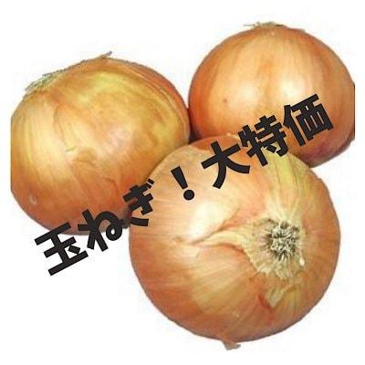 新鮮野菜【玉ねぎSサイズ10キロ】大特価につき数量限定《現地にてお渡し...