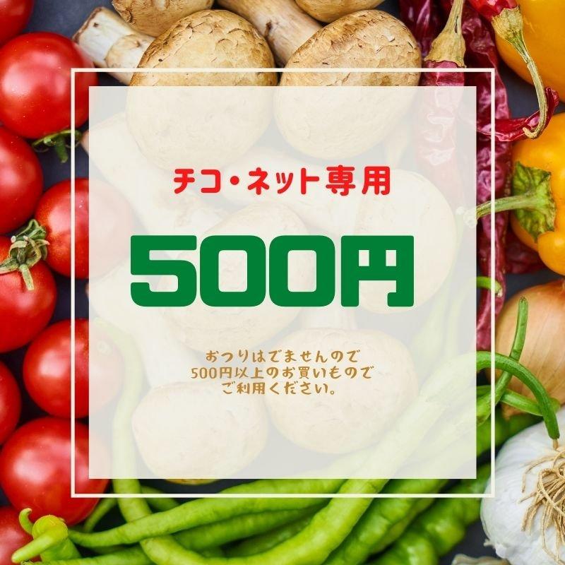 ショッピング金券【500円】チコ・ネットでの新鮮野菜などのお買い物で利用いただけます《現地払い専用》のイメージその1