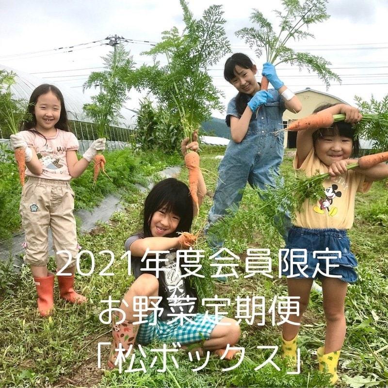 松鶴ファーム会員限定・お野菜定期便「松ボックス」のイメージその1