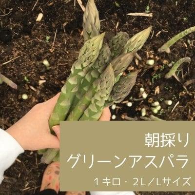 朝採りグリーンアスパラ 1キロ 2LーLサイズ混合