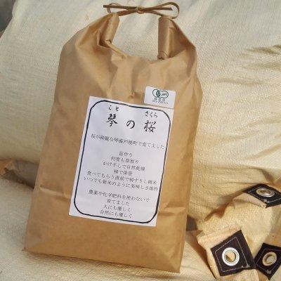 やまさん専用 琴の桜20kg R2長崎産 オーガニック玄米