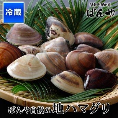 千葉県九十九里自慢の地ハマグリ 1kg 蛤 はまぐり 国産 千葉県九十九里産
