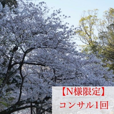 【N様限定】コンサル/1回/対面/長崎大村のヒーリングサロンLuuk