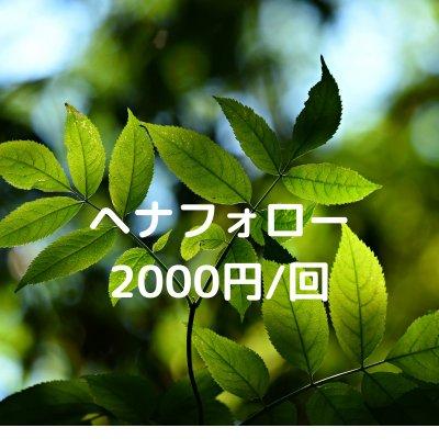 nature(ネイチャー)ヘナフォロー2000円/回ウェブチケット