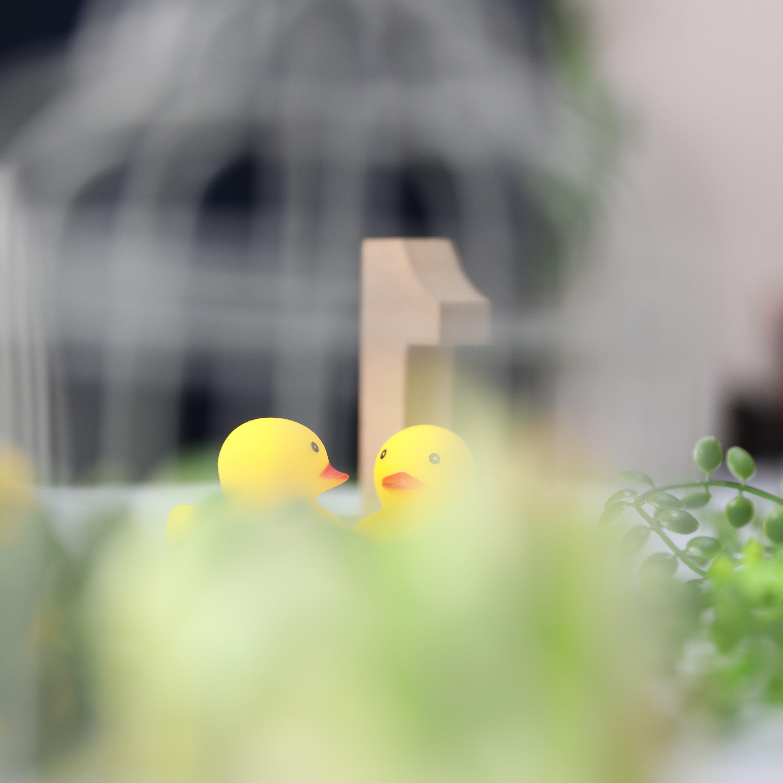 【出張カメラ教室】|マニュアルモード使いこなし講座|★現地決済専用★|2時間で好みの写真を撮ろう|子連れOK|草加・越谷・三郷周辺のイメージその4