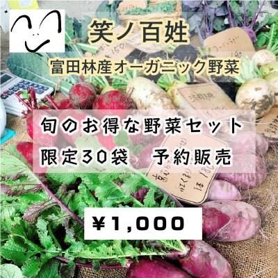 [複製]【事前購入/現地払い専用チケット】6月19日《限定30袋》採れたてオーガニック野菜の予約販売/旬のお得な野菜セット
