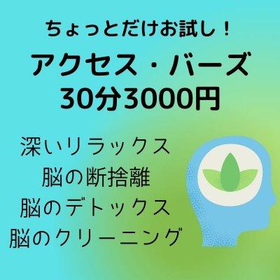 アクセス・バーズ 30分3000円
