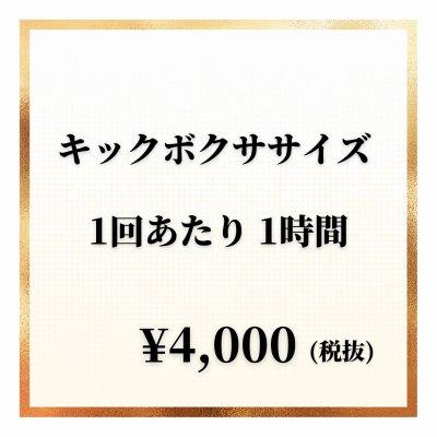【1回分】キックボクササイズチケット